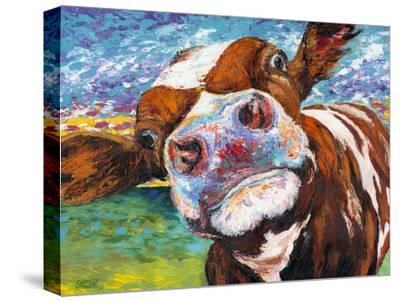 Curious Cow I-Carolee Vitaletti-Stretched Canvas Print