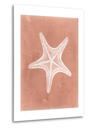 Sealife on Coral IV-Vision Studio-Metal Print
