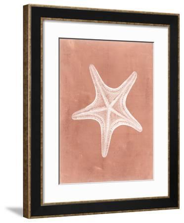 Sealife on Coral IV-Vision Studio-Framed Art Print