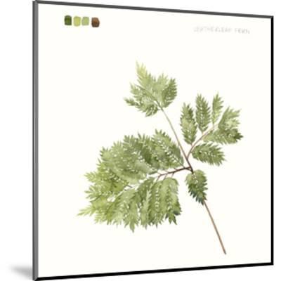 Watercolor Leaf Study II-Grace Popp-Mounted Art Print