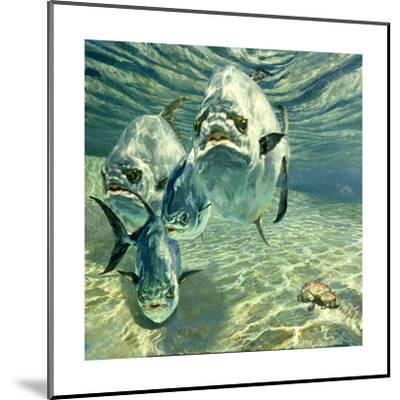 Four Permit and Coral Crab, 1987-Stanley Meltzoff-Mounted Giclee Print