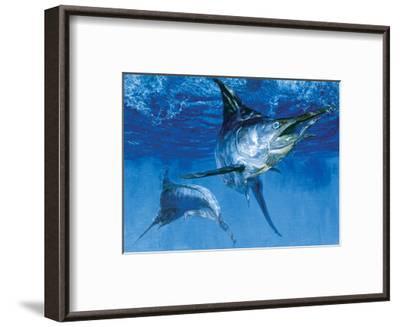 Blue Marlin In: Double Header, 1976-Stanley Meltzoff-Framed Giclee Print