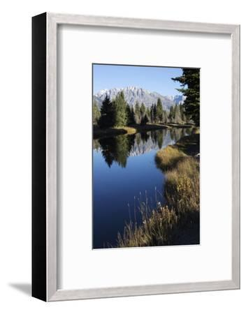 The Teton Range and Evergreen Forests, and their Reflections in the Snake River-Marc Moritsch-Framed Photographic Print