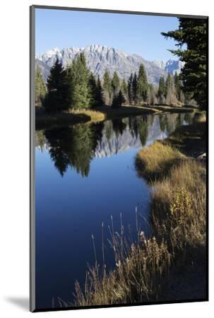 The Teton Range and Evergreen Forests, and their Reflections in the Snake River-Marc Moritsch-Mounted Photographic Print