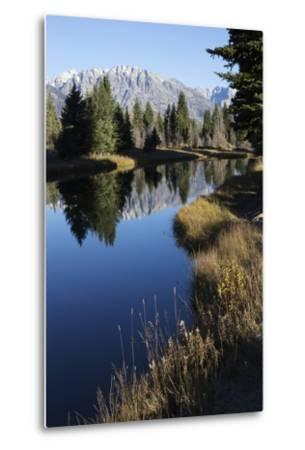 The Teton Range and Evergreen Forests, and their Reflections in the Snake River-Marc Moritsch-Metal Print