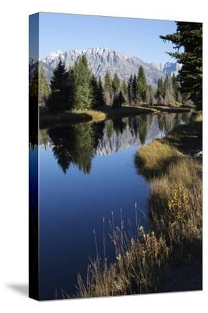 The Teton Range and Evergreen Forests, and their Reflections in the Snake River-Marc Moritsch-Stretched Canvas Print