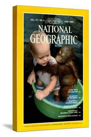 Cover of the June, 1980 National Geographic Magazine-Rodney Brindamour-Stretched Canvas Print