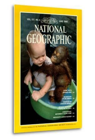 Cover of the June, 1980 National Geographic Magazine-Rodney Brindamour-Metal Print