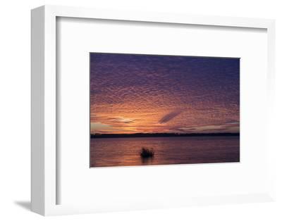 Sunset over Lake Mattamuskeet-Robbie George-Framed Photographic Print