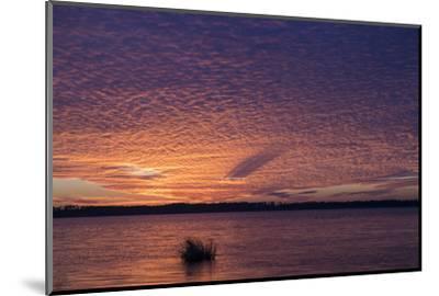 Sunset over Lake Mattamuskeet-Robbie George-Mounted Photographic Print
