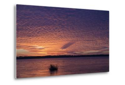 Sunset over Lake Mattamuskeet-Robbie George-Metal Print