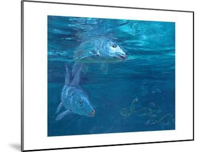 Bonefish Reflecting and Turning: a Bonefish Turns Idly in the Sun-Stanley Meltzoff-Mounted Giclee Print