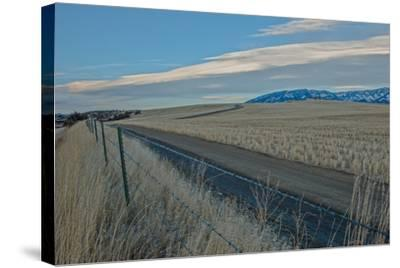 A Road Cuts Through Harvested Wheat Fields as Lenticular Clouds Hover over the Bridger Mountains-Gordon Wiltsie-Stretched Canvas Print