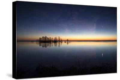 Sunrise with Light Pink Cloud and Planet over Lake Mattamuskeet and a Stand of Bald Cypress Trees-Robbie George-Stretched Canvas Print