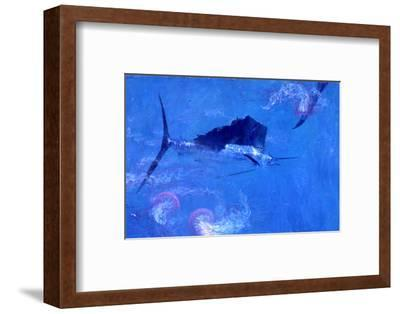 Sailfish and Jellyfish-Stanley Meltzoff-Framed Photographic Print