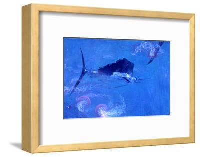 Sailfish and Jellyfish-Stanley Meltzoff-Framed Photographic Print