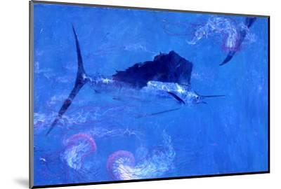 Sailfish and Jellyfish-Stanley Meltzoff-Mounted Photographic Print