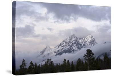 The Teton Range in Grand Teton National Park-Phil Schermeister-Stretched Canvas Print