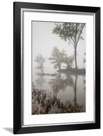 A Foggy Autumn Morning on the Potomac River-Irene Owsley-Framed Photographic Print