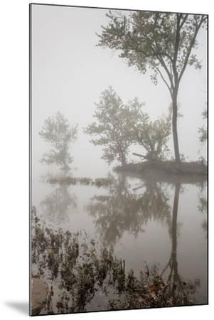 A Foggy Autumn Morning on the Potomac River-Irene Owsley-Mounted Photographic Print