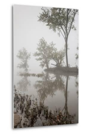 A Foggy Autumn Morning on the Potomac River-Irene Owsley-Metal Print