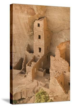 The Ruins of a Cliff Dwelling, Square Tower House, in Mesa Verde National Park-Phil Schermeister-Stretched Canvas Print