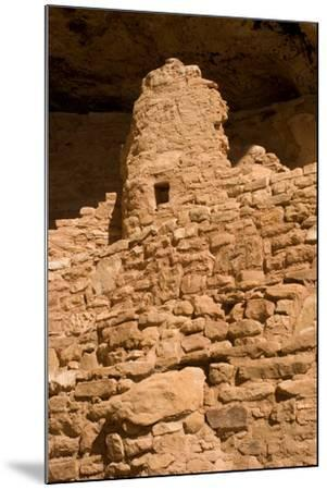 Ruins of a Small Cliff Dwelling, Step House, in Mesa Verde National Park-Phil Schermeister-Mounted Photographic Print