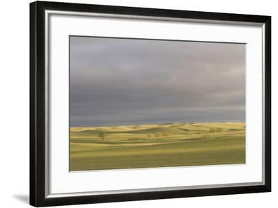 A Thunderstorm Above Oglala National Grassland in Nebraska-Phil Schermeister-Framed Photographic Print