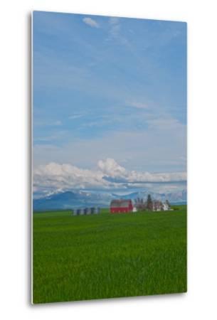 A Family Farm Sits Amid Wheat Fields Near Great Falls, Montana-Gordon Wiltsie-Metal Print