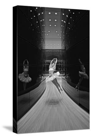 A Ballerina Dancing in the New Edward P. Evans Hall at Yale University-Kike Calvo-Stretched Canvas Print