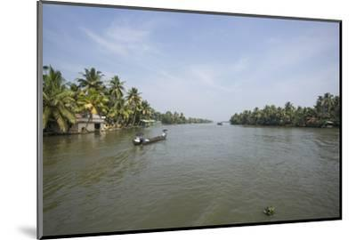A Wide Angle View of the Backwaters in Southern India-Kelley Miller-Mounted Photographic Print