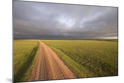 A Road Through Oglala National Grassland in Nebraska-Phil Schermeister-Mounted Photographic Print
