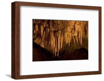 Formations Near the Entrance to the Big Room in Carlsbad Caverns National Park, New Mexico-Phil Schermeister-Framed Photographic Print