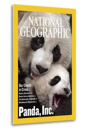 Cover of the July, 2006 National Geographic Magazine-Michael Nichols-Metal Print