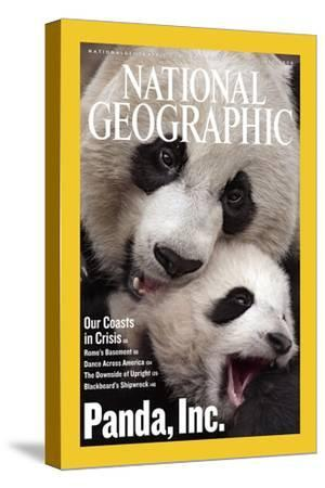 Cover of the July, 2006 National Geographic Magazine-Michael Nichols-Stretched Canvas Print