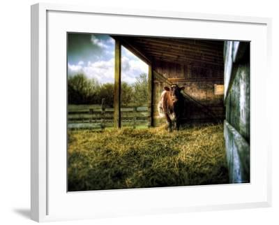 Mama-Stephen Arens-Framed Photographic Print