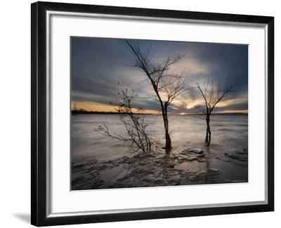 Watchers-Irene Suchocki-Framed Photographic Print