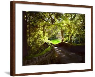 Devonshire Idyll-Jody Miller-Framed Photographic Print