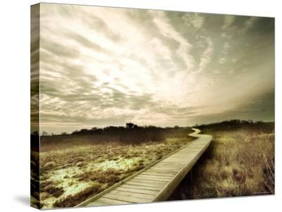 Boardwalk Winding over Sand and Brush-Jan Lakey-Stretched Canvas Print
