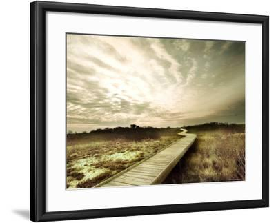 Boardwalk Winding over Sand and Brush-Jan Lakey-Framed Photographic Print
