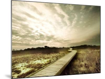 Boardwalk Winding over Sand and Brush-Jan Lakey-Mounted Photographic Print