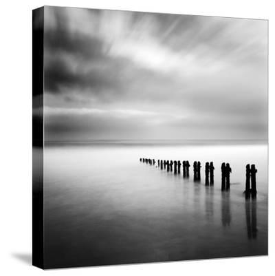 Watermaker-Craig Roberts-Stretched Canvas Print