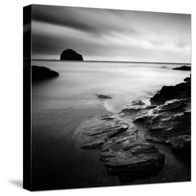 Waterwright-Craig Roberts-Stretched Canvas Print