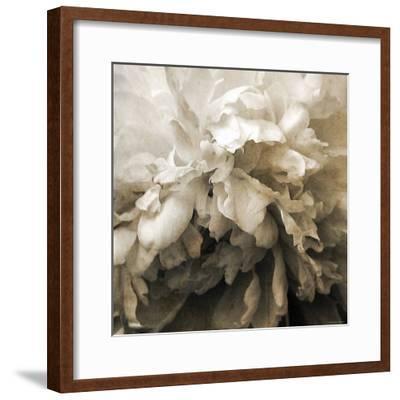 Forget-Katherine Sanderson-Framed Photographic Print