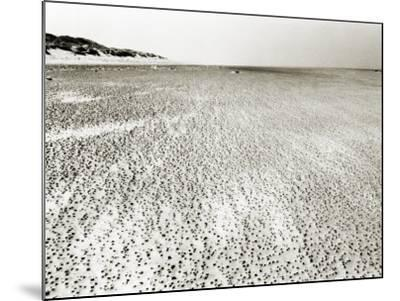Baltrum Beach, no. 6-Katrin Adam-Mounted Photographic Print