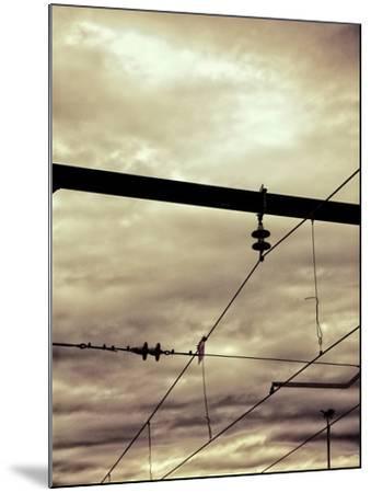 Power Lines-Steve Allsopp-Mounted Photographic Print