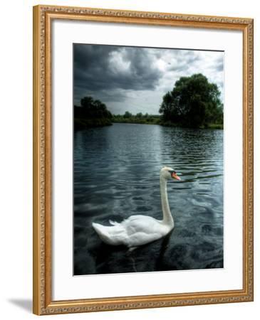 Buzzset-Tim Kahane-Framed Photographic Print