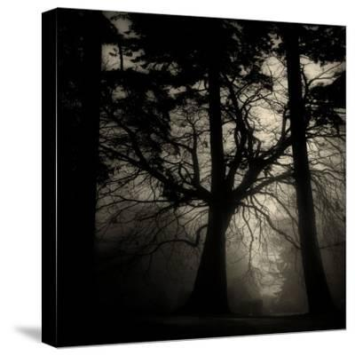 Realpoint-Sharon Wish-Stretched Canvas Print