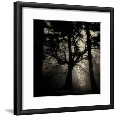Realpoint-Sharon Wish-Framed Photographic Print