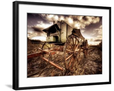 Harvest-Stephen Arens-Framed Photographic Print